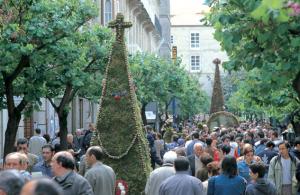 """""""Os Maios"""" Ourense"""