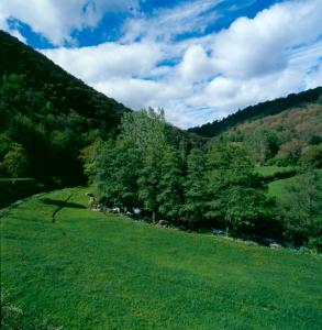 Cruzul-Agüeira