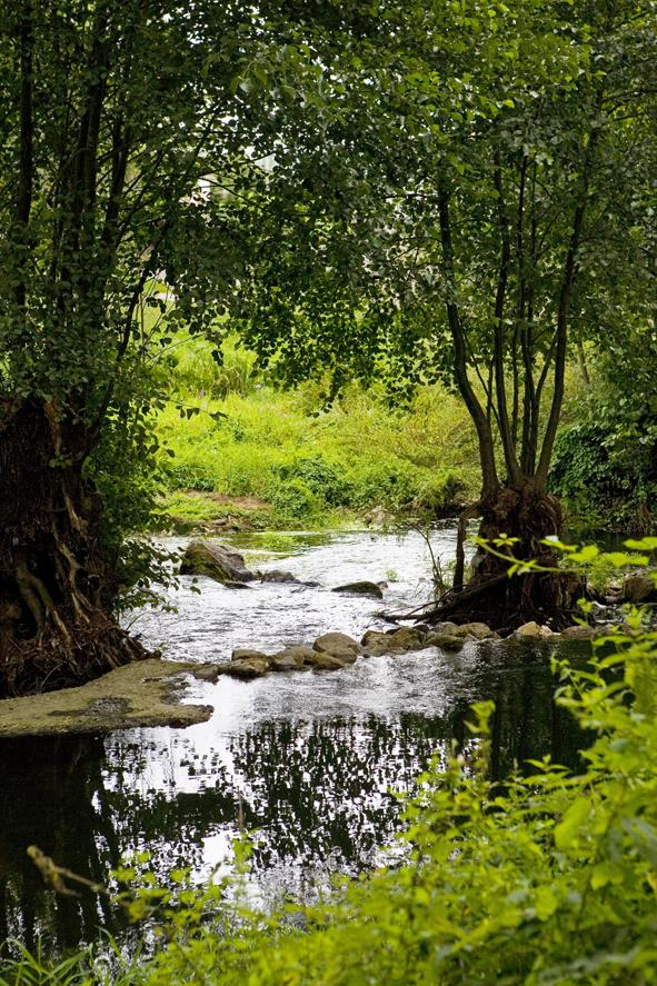 Río Cabe