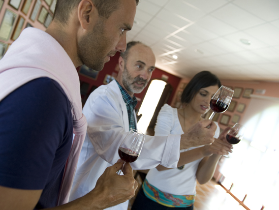 Open day at the winery