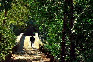 Ruta Termal e do cami+¦o do Norte - A World to Travel (5 de 13)