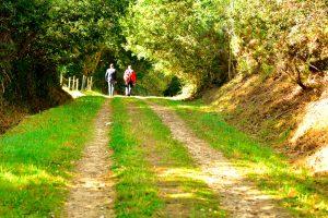 Ruta Termal e do cami+¦o do Norte - A World to Travel (8 de 13)